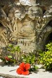 Hibiscus λουλούδι και παλαιά στήλη σε Καρθαγένη Στοκ Εικόνες