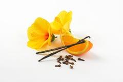 Hibiscus, πορτοκάλι και καρυκεύματα Στοκ Φωτογραφία