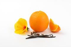 Hibiscus, πορτοκάλι και καρυκεύματα Στοκ Εικόνες