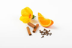 Hibiscus, πορτοκάλι και καρυκεύματα Στοκ Εικόνα
