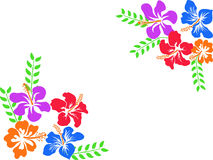 Hibiscus της Χαβάης χρώματος υπόβαθρο ελεύθερη απεικόνιση δικαιώματος