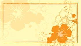 hibiscus визитной карточки Стоковое Фото