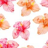 hibiscus Картина тропических заводов безшовная экзотический цветок акварель Стоковая Фотография