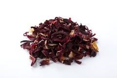 hibiscus Стоковые Фотографии RF