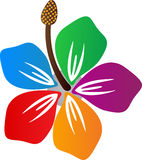 Hibiscus royalty-vrije illustratie