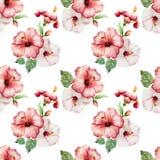 Hibiscus4 Royaltyfria Bilder