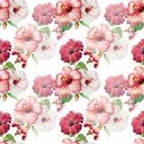 Hibiscus3 Arkivfoto