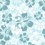Hibiscus background Royalty Free Stock Images
