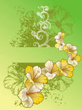 Hibiscus background. Illustration of an abstract background of hibiscus flowers on a green background Royalty Free Illustration