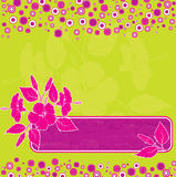 Hibiscus background, vector Royalty Free Stock Photo