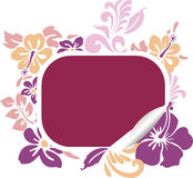Hibiscus banner. Vector illustration of hibiscus banner, light colors Royalty Free Stock Images