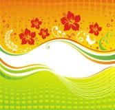 Hibiscus. Bloemen achtergrond. Stock Afbeeldingen