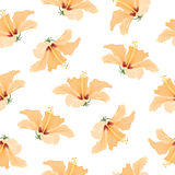 Hibiscus bright yellow tropical flowers pattern Stock Photo