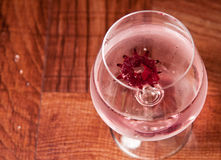Hibiscus cocktail Stock Image