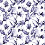 Hibiscus with Cosmea flowers. Seamless pattern with Hibiscus and Cosmea flowers, watercolor illustration Stock Photography