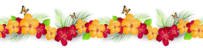 Hibiscus decoration line. Illustration of hibiscus seamless decoration line with butterflies Stock Photography