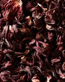 Hibiscus dried petals, Jamaica flowers, tea Stock Photography