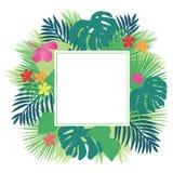 Hibiscus e folhas tropicais ilustração royalty free