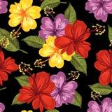 Hibiscus en de tropische achtergrond van het blad naadloze patroon stock illustratie