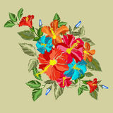 Hibiscus floral bouquet Royalty Free Stock Photos