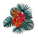Hibiscus floral bouquet Stock Images