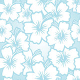Hibiscus floral pattern Stock Photos