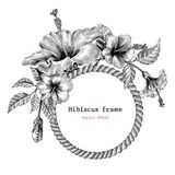 Hibiscus flower frame hand drawing vintage clip art. Isolate on white background vector illustration