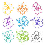 Hibiscus flower outline icons Royalty Free Stock Images