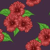 Hibiscus flower pattern by hand drawing. Tattoo art highly detailed in line art style.Red flower seamless pattern on batik cloth Royalty Free Stock Images