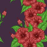 Hibiscus flower pattern by hand drawing. Tattoo art highly detailed in line art style.Red flower seamless pattern on batik cloth Stock Image