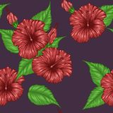 Hibiscus flower pattern by hand drawing. Tattoo art highly detailed in line art style.Red flower seamless pattern on batik cloth Royalty Free Stock Photography