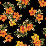 Hibiscus flower pattern Stock Images