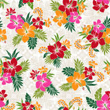 Hibiscus flower pattern Royalty Free Stock Photography