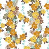 Hibiscus flower pattern Royalty Free Stock Photo