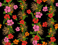 Hibiscus flower pattern Royalty Free Stock Image