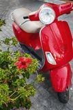Hibiscus flower and scooter on Kos island Stock Photo