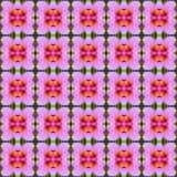 Hibiscus flower seamless. Beautiful pink hibiscus flower seamless use as pattern and wallpaper vector illustration