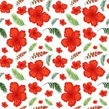 Hibiscus flower seamless pattern. Illustration vector illustration