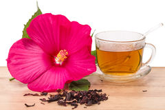 Hibiscus and flower tea Stock Photography