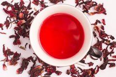 Hibiscus flower Tea Stock Image