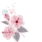 Hibiscus Flower on white background. Vector illustration Stock Photo