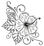 Hibiscus, flowers, floral. Filigree hibiscus decoration, black vector Royalty Free Stock Photography
