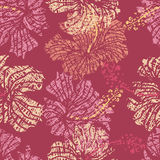 Hibiscus flowers lace seamless pattern Royalty Free Stock Images