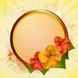Hibiscus flowers and plaque Stock Photo
