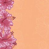 Hibiscus flowers seamless  border Royalty Free Stock Photography