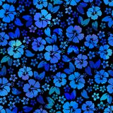 Hibiscus flowers seamless pattern. Hawaiian Aloha Shirt Seamless Background. Stock Image
