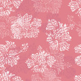 Hibiscus flowers tender seamless pattern Royalty Free Stock Photography