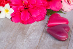 Hibiscus  flowers with two pink hearts Royalty Free Stock Images