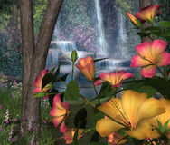 Hibiscus Flowers & Waterfalls Royalty Free Stock Photo