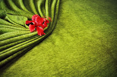 Hibiscus flowers wrapped in a green blanket on the bed. Royalty Free Stock Images
